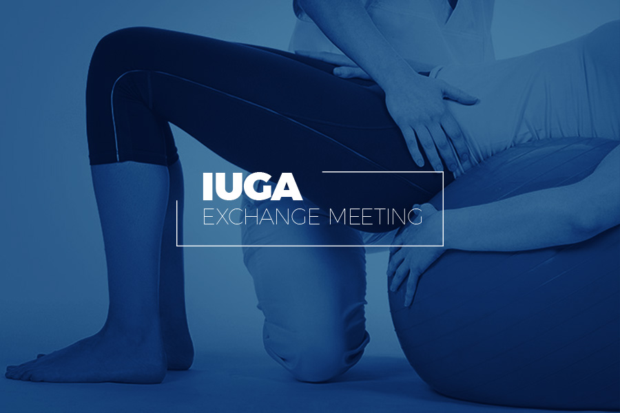 IUGA EXCHANGE MEETING